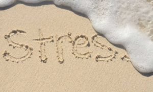 Stress Leads to Weight Gain - Relax Now 2