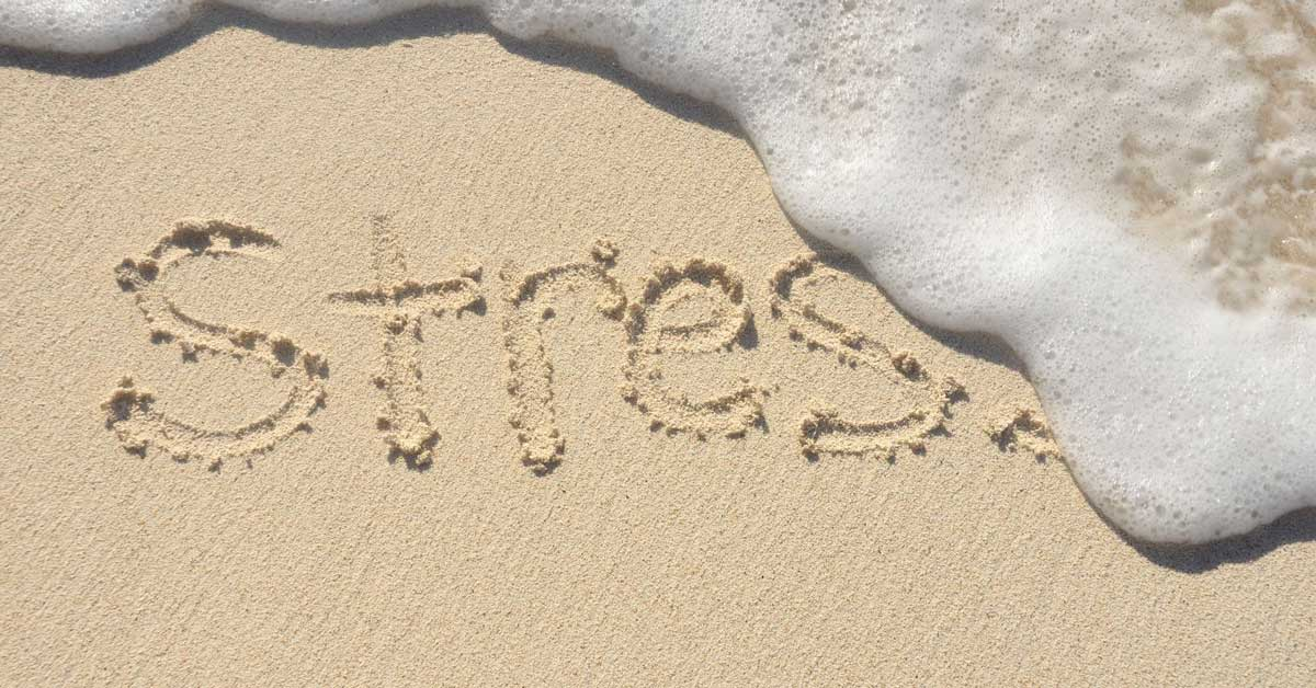 Stress Leads to Weight Gain - Relax Now 1