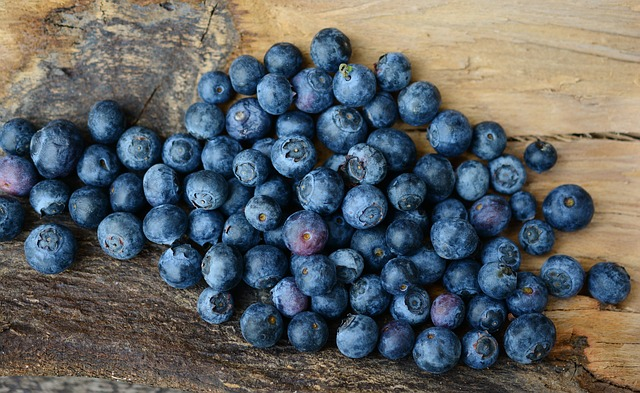 fat-burning-fruits-blueberries