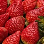 fat-burning-fruits-strawberries