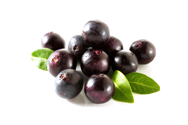 acai-fruit-antioxidant