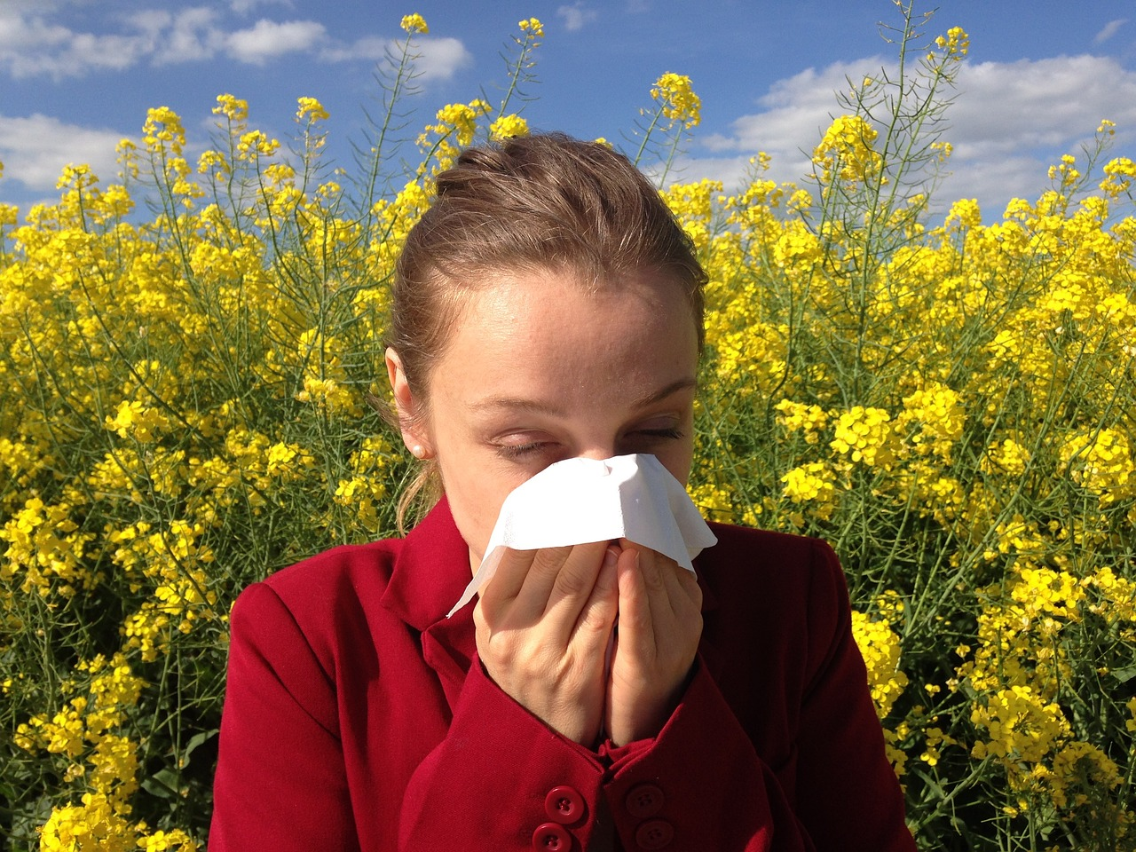 allergy-survival-guide